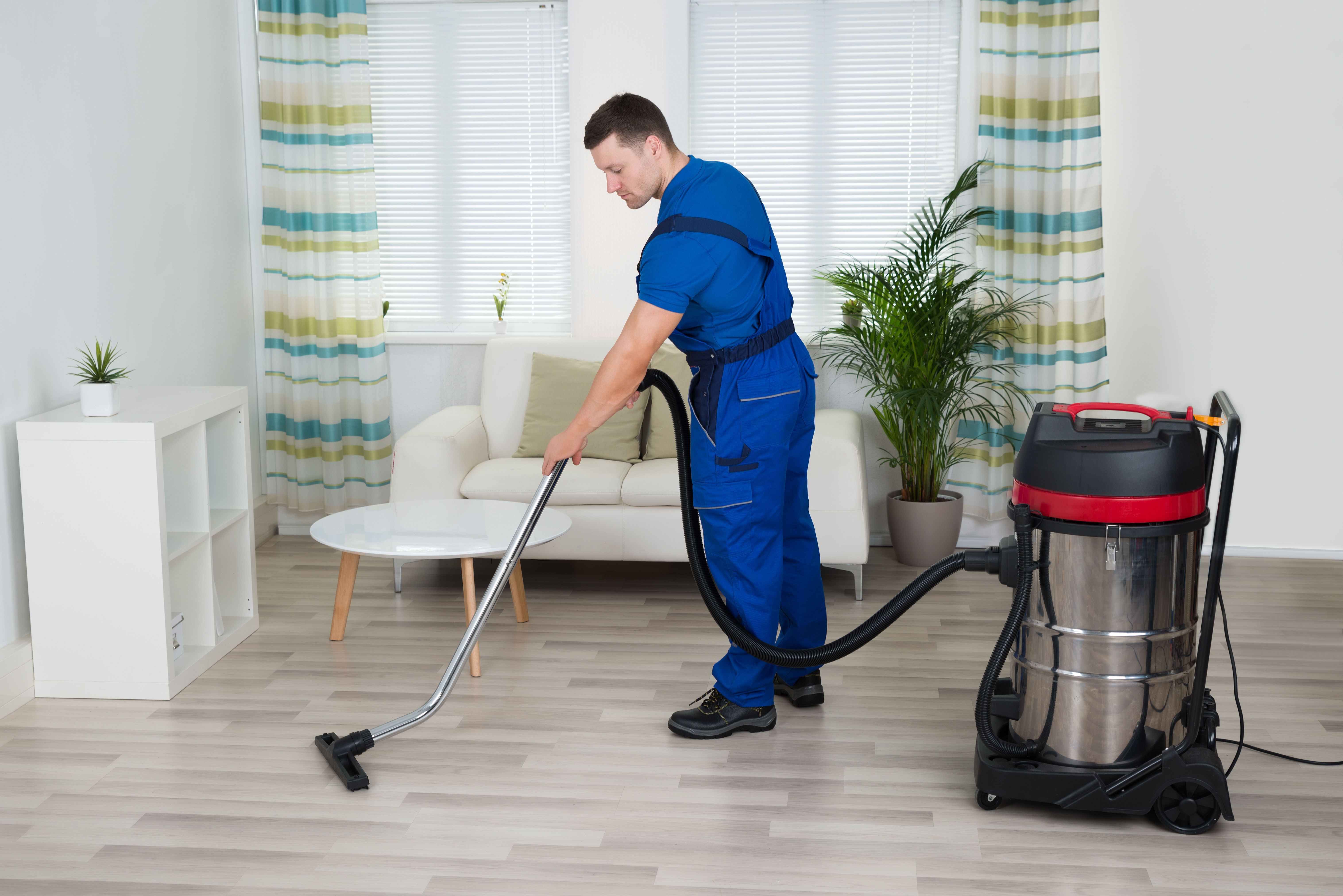 how to get carpets cleaned